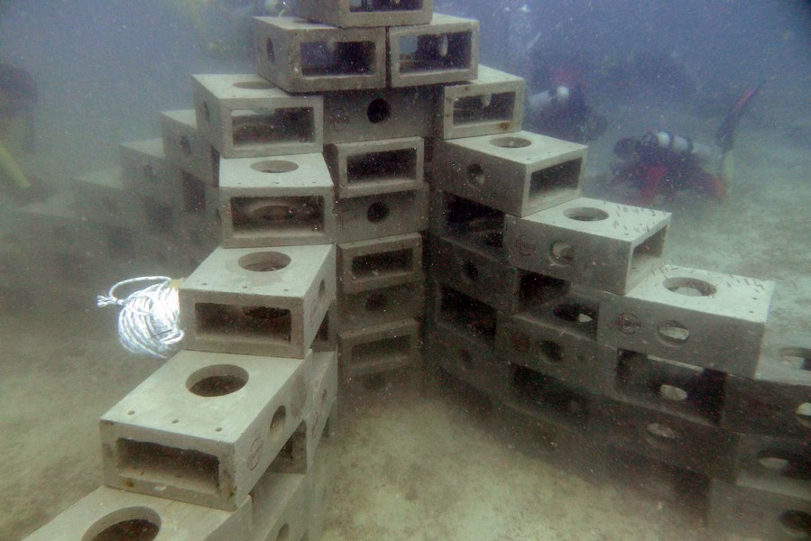 Artificial Reef Project